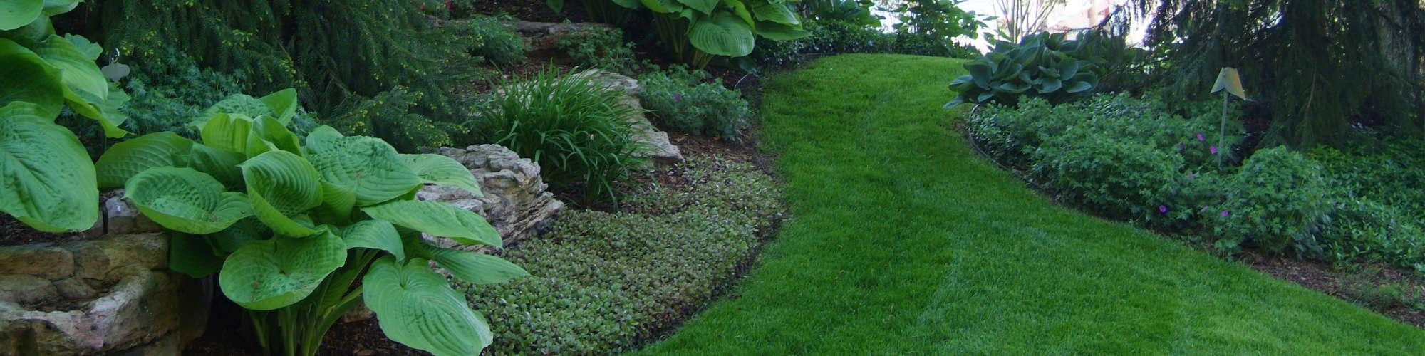 Detailing and Bed Maintenance - Windscapes Landscaping - Landscape Design Grand Rapids MI