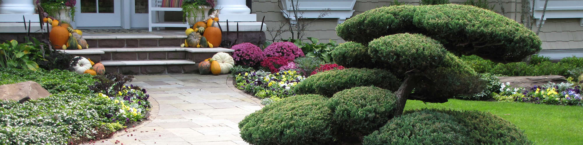 Specialized Pruning - Windscapes Landscaping - Landscape Design Grand Rapids MI