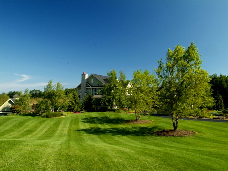 Windscapes Landscaping - Landscape Design Specialized Lawn Care