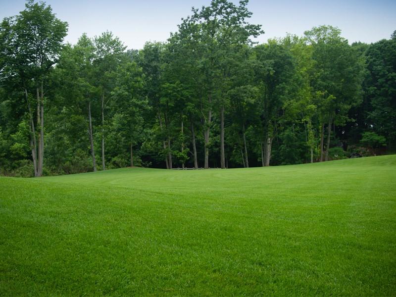 Windscapes Landscaping - Landscape Design Specialized Lawn Care
