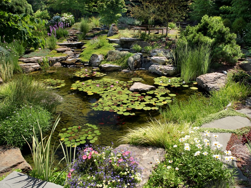 Windscapes Landscaping - Landscape Design Waterfall and Pond Care