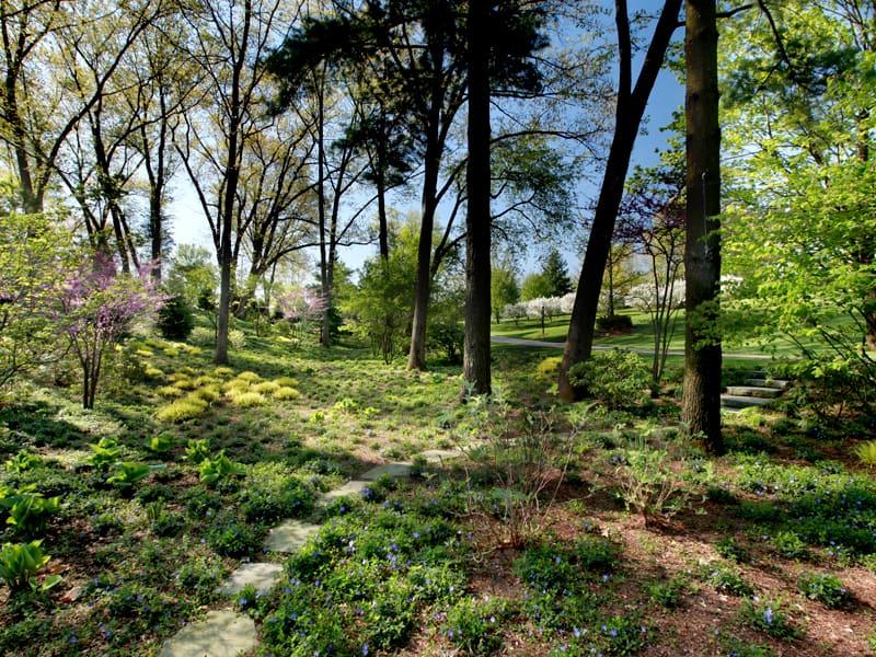Windscapes Landscaping - Landscape Detailing and Bed Maintenance